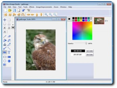 Falco Image Studio 13.8 screenshot
