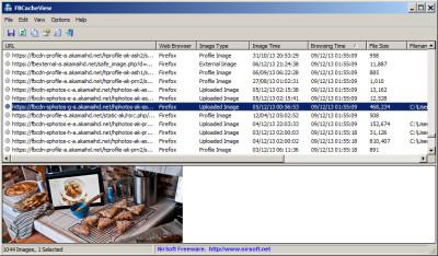 FBCacheView 1.21 screenshot