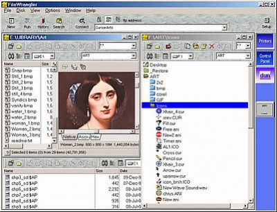FileWrangler 5.30 screenshot