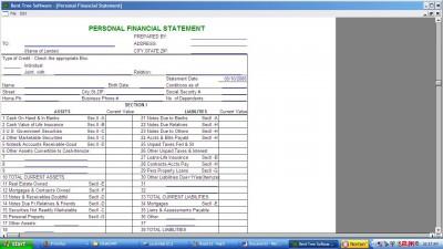 Financial Statement+ 1.0 screenshot