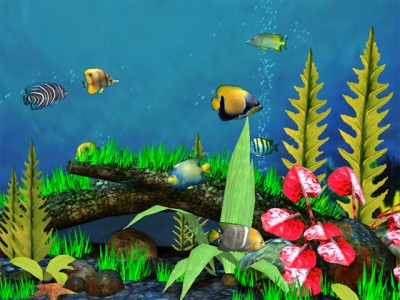 fish tank wallpaper. Fish Aquarium 3D Screensaver