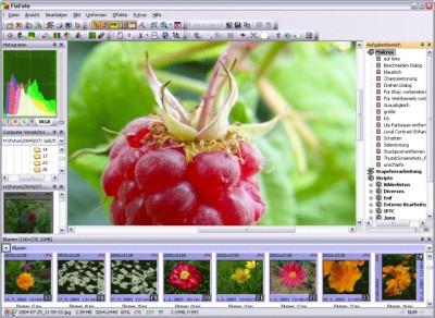 FixFoto 2.90 screenshot