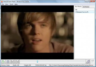 Flash2X Flash Player 3.0.2 screenshot