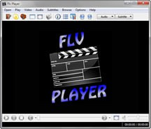 FLV Player 2011 1.1 screenshot