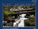 Forest Waterfall 1.0 screenshot