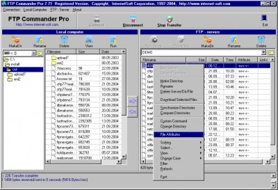 FTP Commander 8.01 screenshot