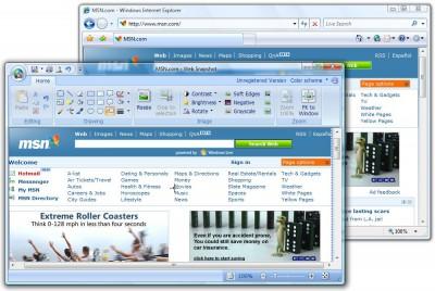 Gadwin Web Snapshot 2.5 screenshot
