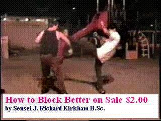 How to Block Better for Martial Artists 1.1 screenshot