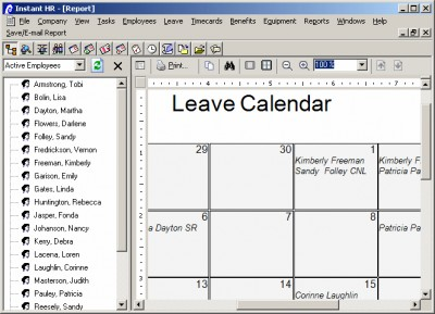 iLeave and Attendance Software 3.0 screenshot