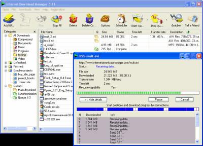 Internet Download Manager 6.37.14 screenshot