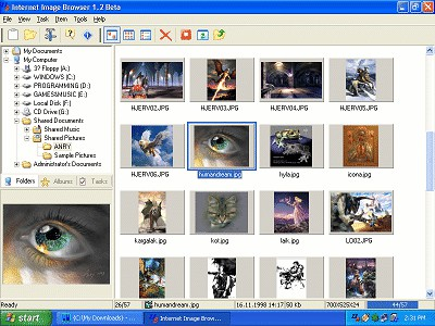 Internet Image Browser 1.2 screenshot
