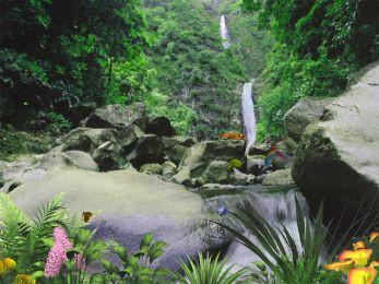 Jungle Waterfall 5.07 screenshot