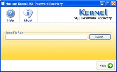 Kernel SQL Password Recovery 4.02 screenshot