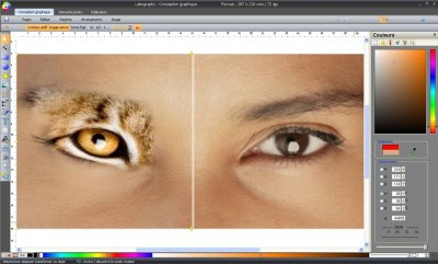 Labography 7.02 screenshot
