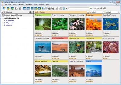MediaDex Professional (Win) 2.0 screenshot
