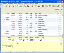 MMS Buchführung und Bilanz 8.0 screenshot