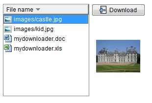 MyDownloader 1.8 screenshot