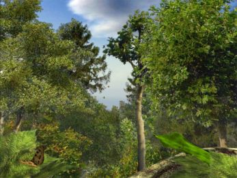 Mystery Forest 5.07 screenshot