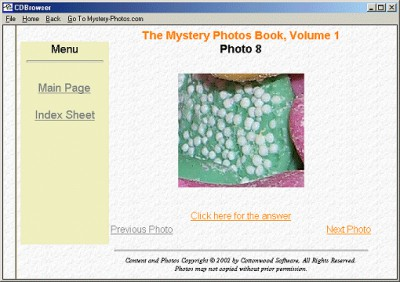 Mystery Photos Book 1 1.0 screenshot