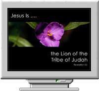 Names of Christ Christian Screen Saver 3.0 screenshot