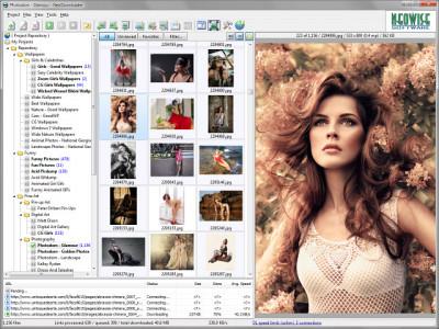 NeoDownloader 3.0.3 screenshot