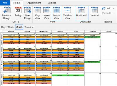NOV Schedule for .NET 2017.1 screenshot