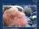 Ocean Floor 1.0 screenshot
