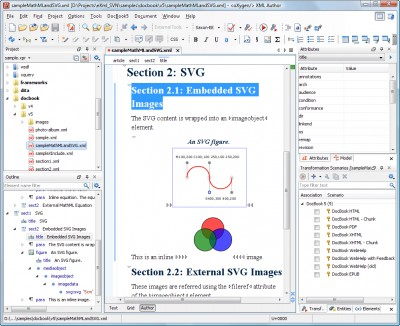 oXygen XML Author 20.1 screenshot
