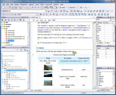 oXygen XML Editor and XSLT Debugger 20.1 screenshot