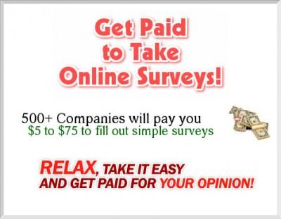 Paid Survey Pro 2008.243 screenshot