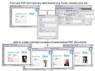 pdf-FieldMerge 13.4 screenshot