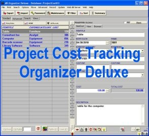 Project Cost Tracking Organizer Deluxe 4.11 screenshot