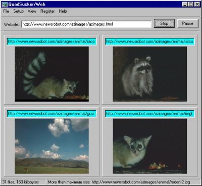 QuadSucker-Web 3.4 screenshot