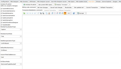 Ranet OLAP 3.1.741 screenshot
