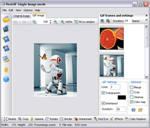 ReaGIF convert to GIF 2.3 screenshot
