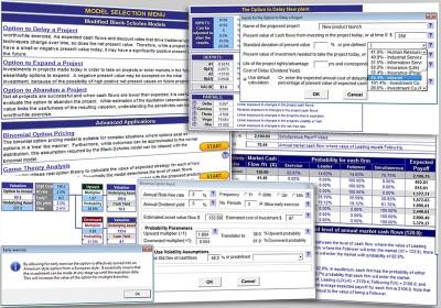 Real Options Valuation 3.2 screenshot
