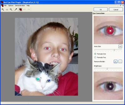 Red Eye Pilot Plugin 1.40 screenshot