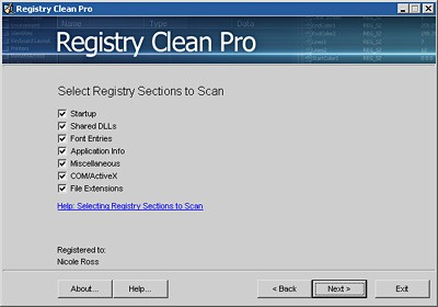 Registry Clean Pro 1.0 screenshot
