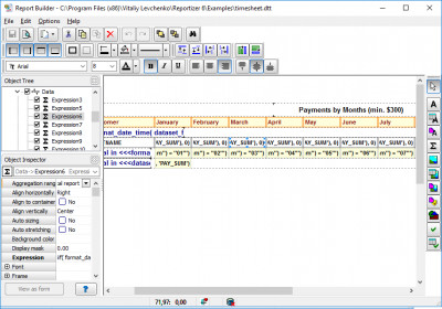 Reportizer 4.0.3.209 screenshot