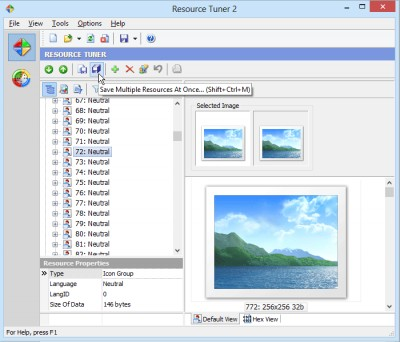 Resource Tuner 2.04 screenshot