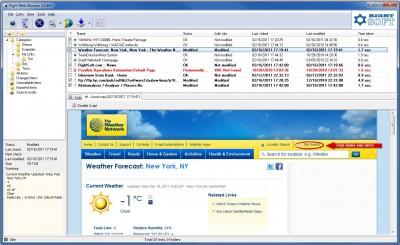 Right Web Monitor 3.0.512 screenshot