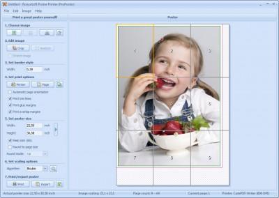 RonyaSoft Poster Printer 3.02.17 screenshot
