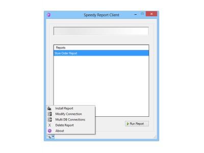 Speedy Report Client, Multi User 1.0 screenshot
