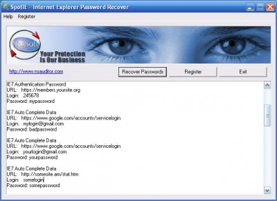 SpotIE Password Recovery 2.9.5 screenshot