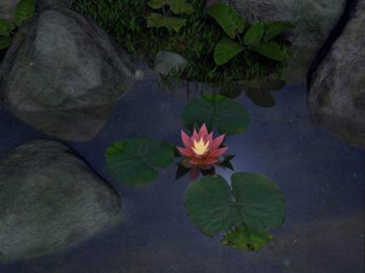 SS Water Lily - Animated 3D Screensaver 3.1 screenshot