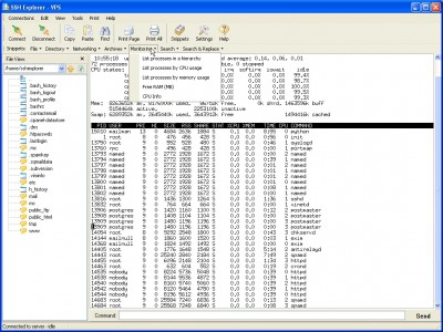 SSH Explorer 1.3 screenshot