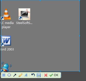 SteelSoftScreenShot 4.0 screenshot