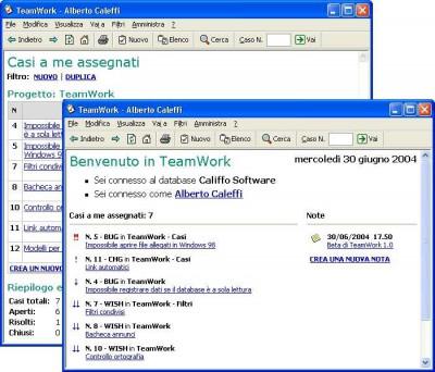Teamwork 1.00 screenshot