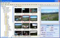 Total Image Watermark 1.1 screenshot
