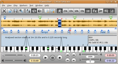 Transcribe! for Linux 8.40 screenshot